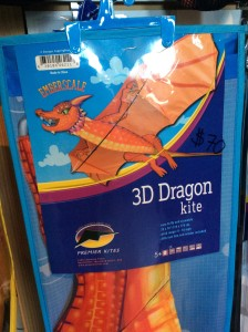 """Breathe fire and roast a couple knights with this giant 3-D dragon kite. 70x70"""" / 178x178 cm. $70"""